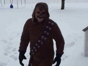 Chewbacca has been seen