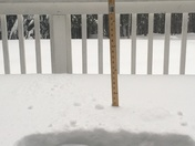 6PM Deerfield 15.5""