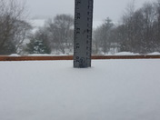 19.5 inches in Schuylkill County