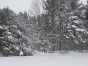 3/14-15/17 Blizzard in Mooers Ny
