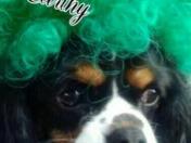 Happy St. Patrick's Day!🍀