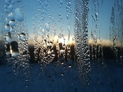 Morning Droplets On Window