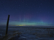 Blue Aurora fence
