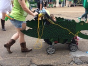 Coolest paddy parade pic