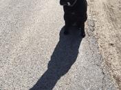 #sundog