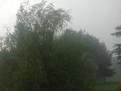 Oakdale Thunderstorms