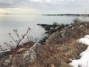 Kittery Oceanside Landscapes