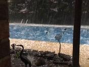 Greer SC hail