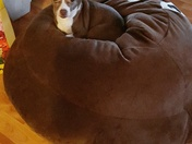 Eva on Gabriel's giant poo beanbag
