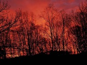 Carolina Clemson Sunrise