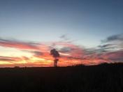 Sayre fire sunset, by Denney dodson w