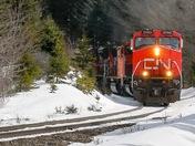 CN 2593