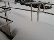 Snowstorm Cooper Roost farm