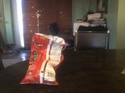 Zipchip Bags