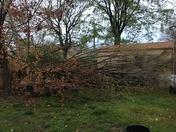 Storm damage in bentonville 4-4-17