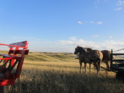Wagon Ride along the Prairie Rim