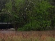 Clear Creek in Abbeville County