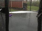 Hail gathered on trampolin