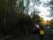 Tree down on power line on Lester Ashely Rd. In Honea Path s.c.
