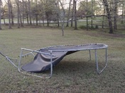 Results of last nights storm