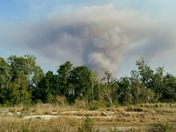 Brush fire in chuluota