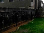 Thunder Storm Marysville Ca
