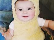 Favorite Little Peep