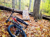 A Ride in Fall Colors