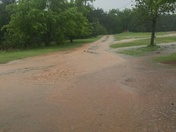 Our driveway!