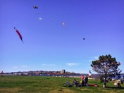 Flying Kites at Bug Light Park