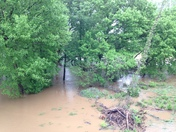 Flood waters on the Yadkin River in Elkin and Jonesville