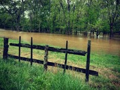 Flooding in mocksville