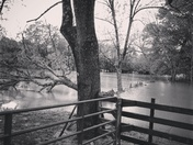 Flooding mocksville