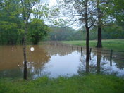 Our horse pasture flooded, Advance, NC