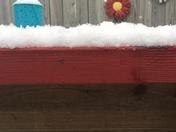 Still snowing in Dedham
