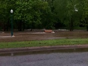 Flooding on JBU Campus