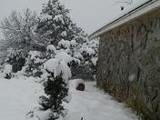Snow in the Edgewood, NM
