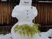 Hawaiian snow woman