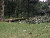 Storm that rip through CLINTON MS