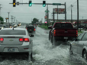 Springdale Flooding