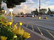 Rainbow Sanford Walmart