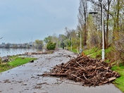 Waterfront trail in Hamilton, ON after flood.