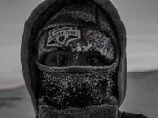 Arctic Beard