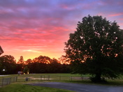 Hickory Tavern School Sunrise