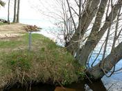 Losing memorise Lake Ontario