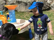 Dog and toddler playing outside in the sun!
