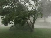Storm in Cedar Valley