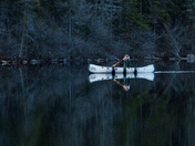 Evening Paddle in Algonquin