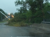 Tree down on 26th and Bristol.