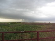 tornados from Carter to nearly Canute